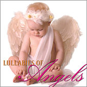 Lullabies of Angels by Steven Anderson