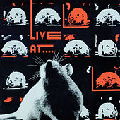 Live at the Rat by Various Artists