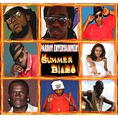 Summer Blaze by Various Artists