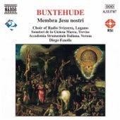 BUXTEHUDE: Membra Jesu Nostri by Accademia Instrumentale Italiana