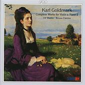 Goldmark: Complete Works for Violin & Piano, Vol. 2 by Various Artists