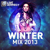The Winter Mix 2013 by Various Artists