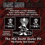 The Mid South Snake Pit by Various Artists