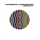 Vibrations by Experimental Audio Research