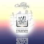 Redux Recordings Collection Summer Edition 2013 - EP by Various Artists