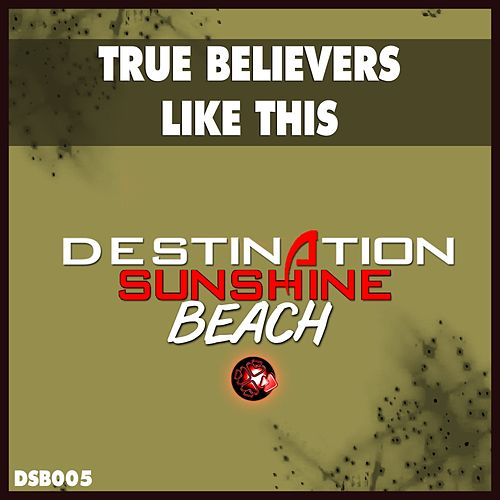 Like This by True Believers