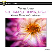 # 1 Classical - Schumann, Chopin, Rachmaninov Liszt and more by Jura Margulis