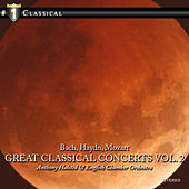 Great Classical Concertos Vol.2 by Various Artists