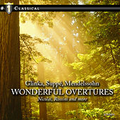 Wonderful Overtures by Various Artists