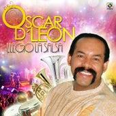 Llego la Salsa by Oscar D'Leon