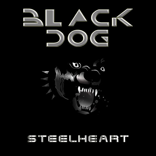 Black Dog by Steelheart