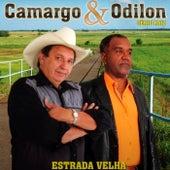 Estrada Velha by Zezé Di Camargo & Luciano