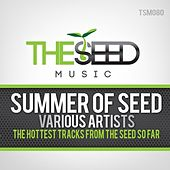 Summer of Seed by Various Artists