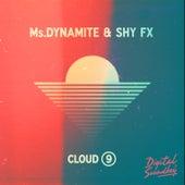 Cloud 9 by Shy FX