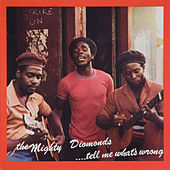 Tell Me Whats Wrong by The Mighty Diamonds