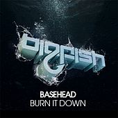 Burn It Down by Basehead