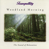 Woodland Morning - The Sound of Relaxation by Tranquility