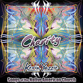 Charity by Kevin Yazzie