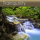 Tranquility (Relaxation Music for Your Health and Well-Being) by Dr. Harry Henshaw