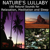 Nature's Lullaby: 100 Natural Sounds for Relaxation, Mediation and Sleep by Dr. Sound Effects SPAM