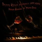 Petits Reves Bizarres XIII-XXIV (feat. Stephan Beneking) by Milana
