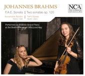 Brahms: F.A.E. Sonata & Two Sonatas Op. 120 by Annemarie Astrom