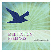 Meditation Feelings (Mindfulness Music) by Various Artists