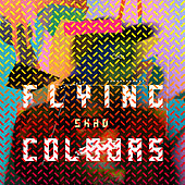 Flying Colours by Shad
