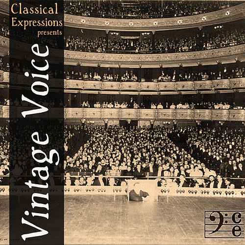 Vintage Voice: 60 Songs by the Greatest Opera Singers of All Time Including Enrico Caruso, Dietrich Fischer-Dieskau, Leontyne Price, Jan Peerce, Elisabeth Schwarzkopf, Marian Anderson, Renata Tebaldi, Alma Gluck, & More by Various Artists