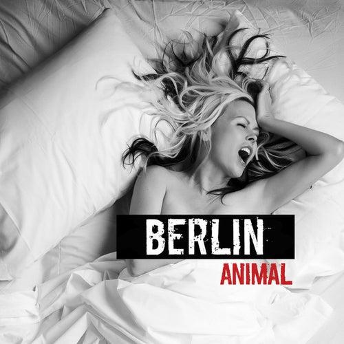 Animal by Berlin