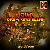 Liquid D&B Essentials 2013 Vol.4 - EP by Various Artists