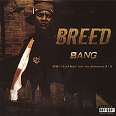 Bang by MC Breed