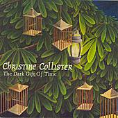 The Dark Gift Of Time by Christine Collister