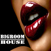 Bigroom House (The Best Electric, Electro House, Electronic Dance, EDM, Techno, House, Techhouse & Progressive Trance) by Various Artists