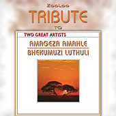 A Tribute To - Best of Amageza Amahle & Bhekumuzi Luthuli by Zooloo