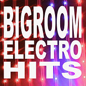 Bigroom Electro Hits (The Best Electro House, Electronic Dance, EDM, Techno, House, Deep House, Techhouse & Progressive Trance) by Various Artists