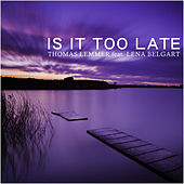 Is It Too Late by Thomas Lemmer
