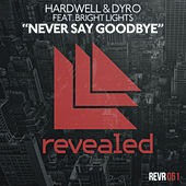 Never Say Goodbye by Hardwell