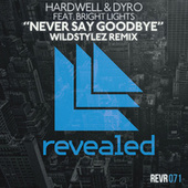 Never Say Goodbye (Wildstylez Remix) by Hardwell