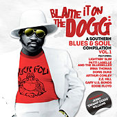 Blame It on the Dogg: A Southern Blues & Soul Compilation Vol. 1 by Swamp Dogg