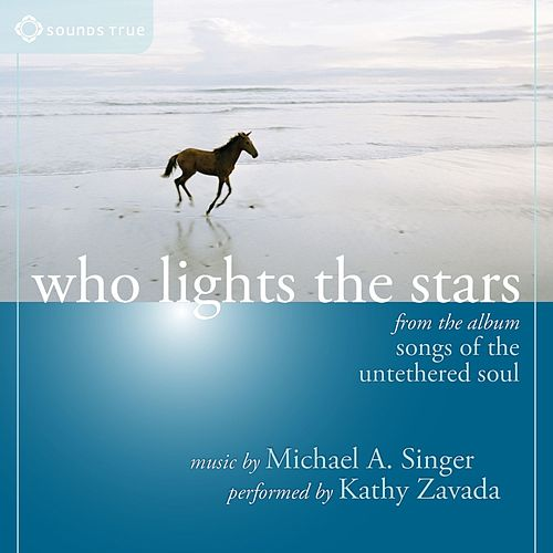 Who Lights the Stars by Michael A. Singer