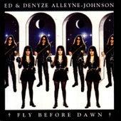 Fly Before Dawn by Ed Alleyne-Johnson
