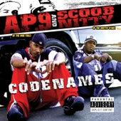Codenames by AP. 9