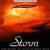 Storm by Sounds Of The Earth
