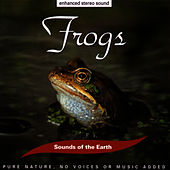 Frogs by Sounds Of The Earth