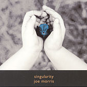 Singularity by Joe Morris