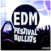 EDM Festival Bullets by Various Artists