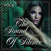 The Sound of Silence, Vol. 5 (A Taste of Exotic Ambient Lounge and Erotic Chill Out) by Various Artists