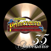 35 Aniversario by Various Artists