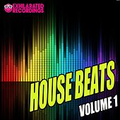 Exhilarated Recordings House Beats Volume 1 - EP by Various Artists